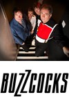 Buzzcocks na Long Night festivalu