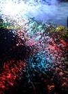 Prihvati izazov - Guarana Foam fest