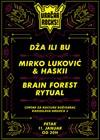 Vračar Rocks: Dža ili Bu, Mirko Luković & Haskii i Brain Forest Rytual