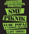 Zajednicki koncert bendova SMF, Piknik i Vudu Popaj i Narodni travari
