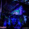 Srpski šumski psy-trance festival osvojio evropske posetioce!